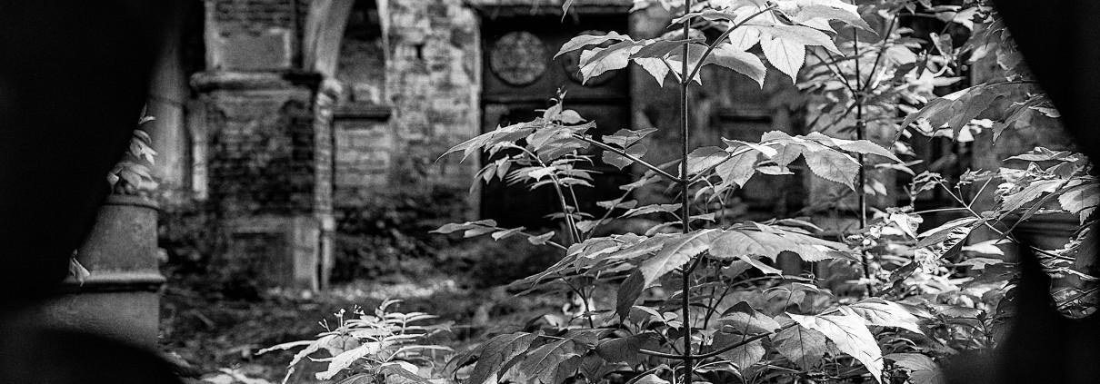 Opustená synagóga je mementom škôd spôsobených počas holokaustu nemeckými a rumunskými okupantmi.